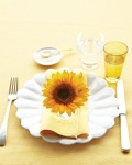 mld105719_0710_sunflower1_vert