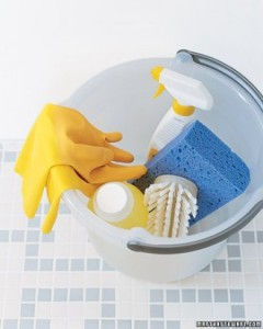 Martha Stewart Cleaning Checklist