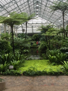 Garfield Park Conservatory - Poor Girl's Guide Chicago